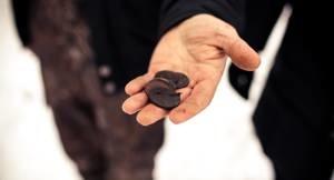 У нас оценивают и покупают золотые монеты эпохи Анны Иоановны